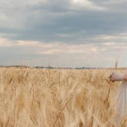 Petritas, Pilar del Toro, Rubio Kids y más… Alternativas 2015 al clásico vestido de comunión.