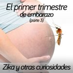 6-primer-trimestre-embarazo-3