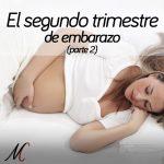 8-segundo-trimestre-embarazo-parte-2