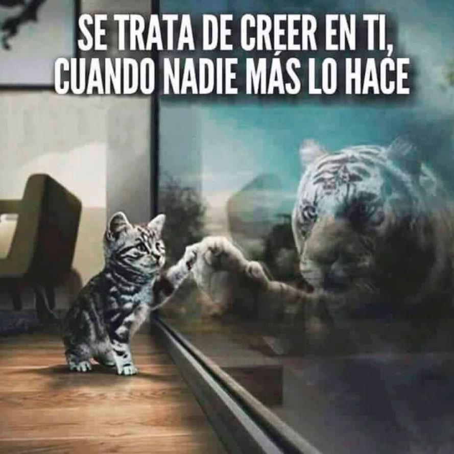 Creer (Reflexión) Cree-en-ti-siempre