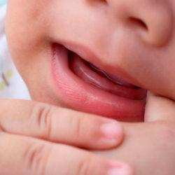 portada dolor dental