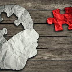 portada la meditacion puede cambiar el cerebro