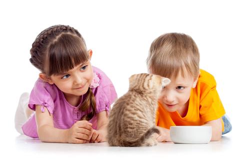 los niños y viajar con mascota