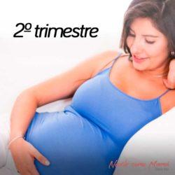 segundo trimestre embarazo
