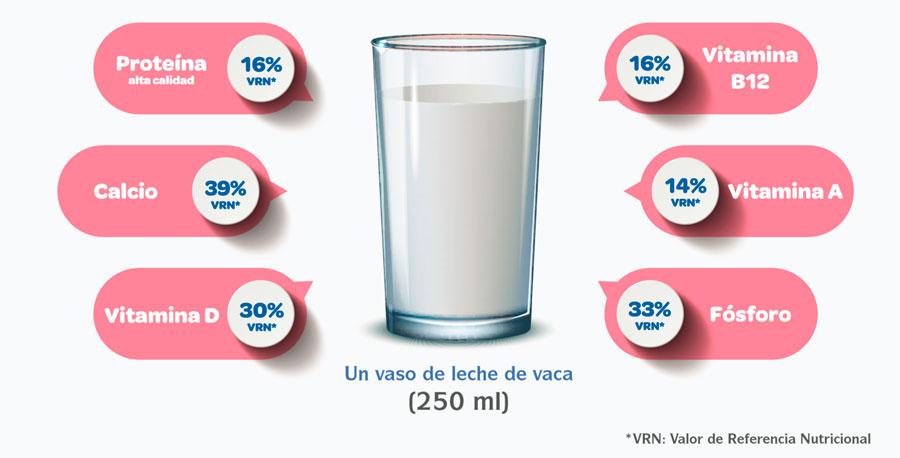 leche en el embarazo 7