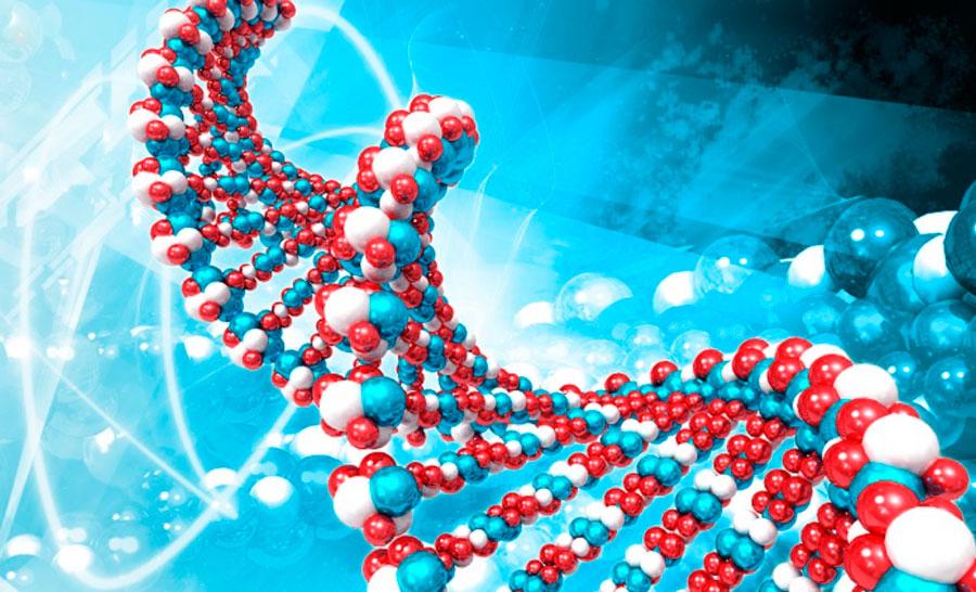 genética diagnóstico prenatal