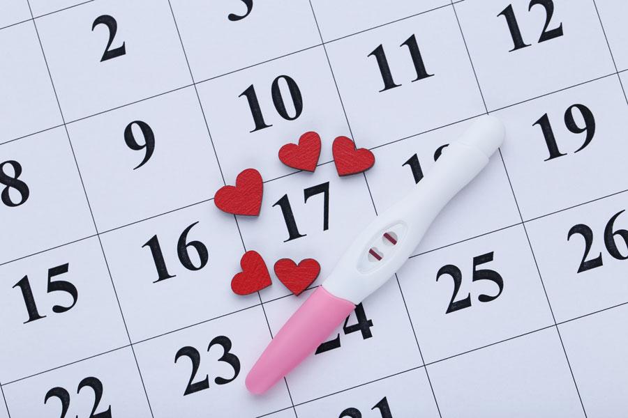 portada calculadora de ovulacion y fertilidad